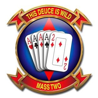 1 MARINE AIR WING (MASS 2) Marine Corps